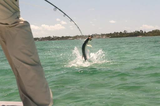 Miami Flats Fishing for Big Tarpon