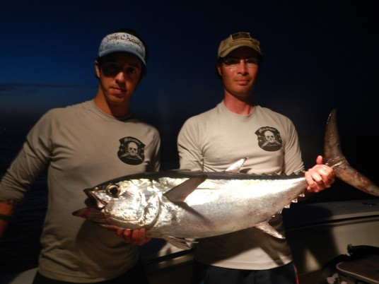 Blackfin Tuna Miami, FL