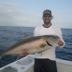 Amberjack which took a vertical jig at the country wrecks