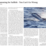 Live Chumming for Sailfish article in Coastal Angler Magazine by Capt. Charlie Ellis