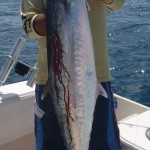 Capt Charlie Ellis with a big Miami Kingfish