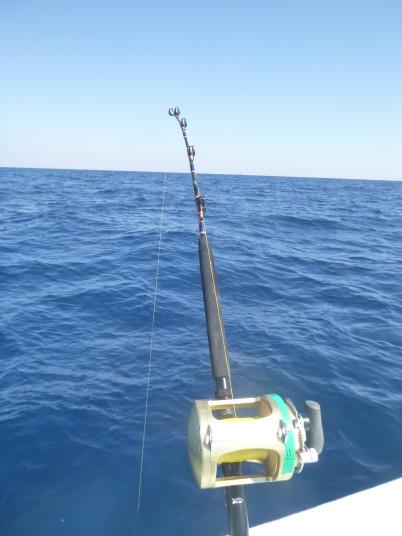 daytime swordfishing venice LA