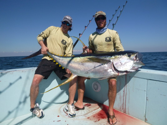 Capt Charlie Ellis and Capt Todd Malicoat with a giant venice, LA yellowfin tuna