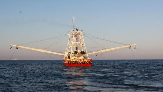Venice, LA Shrimp Boat Trawling the Gulf of Mexico