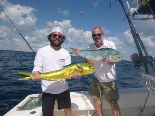 Mahi Mahi fishing charter Miami, FL