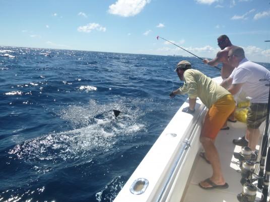 Capt Charlie Ellis of Miami, FL wiring a sailfish
