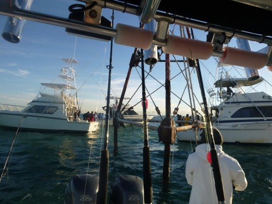 Catching live bait at bug light off Key Biscayne