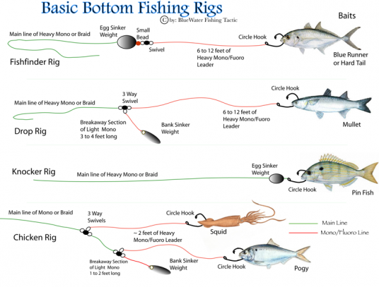 Essential bottom fishing rigs a comprehensive guide to for Red drum fishing rigs