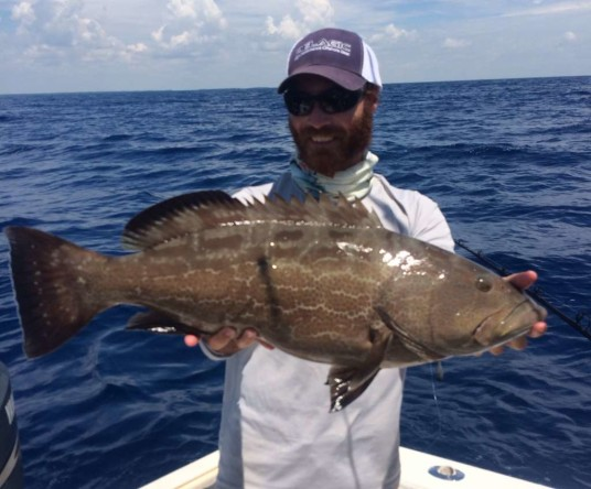 5 surefire summer grouper fishing tactics | grouper fishing tips, Reel Combo