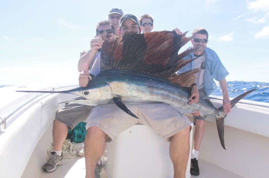 Hammond family sailfish