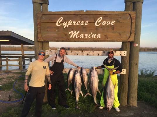 Tuna on the board at Cypress Cove